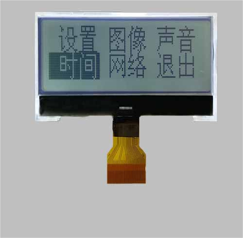 Custom LCD display COG module
